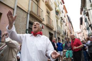 【サンティアゴ巡礼・フランス人の道】40日目:これがスペインだ! ズビリ 〜 パンプローナ 22km