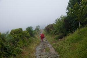 【サンティアゴ巡礼・フランス人の道】67日目:ちょっとキツイくらいが楽しい ベガ・デ・バルカルセ 〜 オセブレイロ 12km