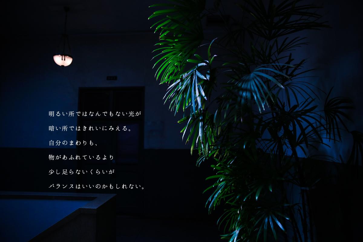 明るい所ではなんでもない光が 暗い所ではきれいにみえる。 自分のまわりも、 物があふれているより 少し足らないくらいが バランスはいいのかもしれない。