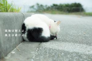 孤独は耐えよ。 孤立は避けよ。