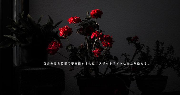 自分の立ち位置で夢を咲かす人に、スポットライトは当たり始める。