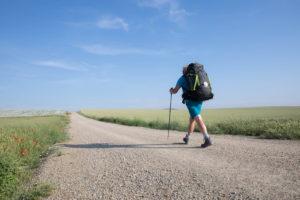 【サンティアゴ巡礼・フランス人の道】48日目:個が立っている人 サント・ドミンゴ 〜 ベロラド 23km