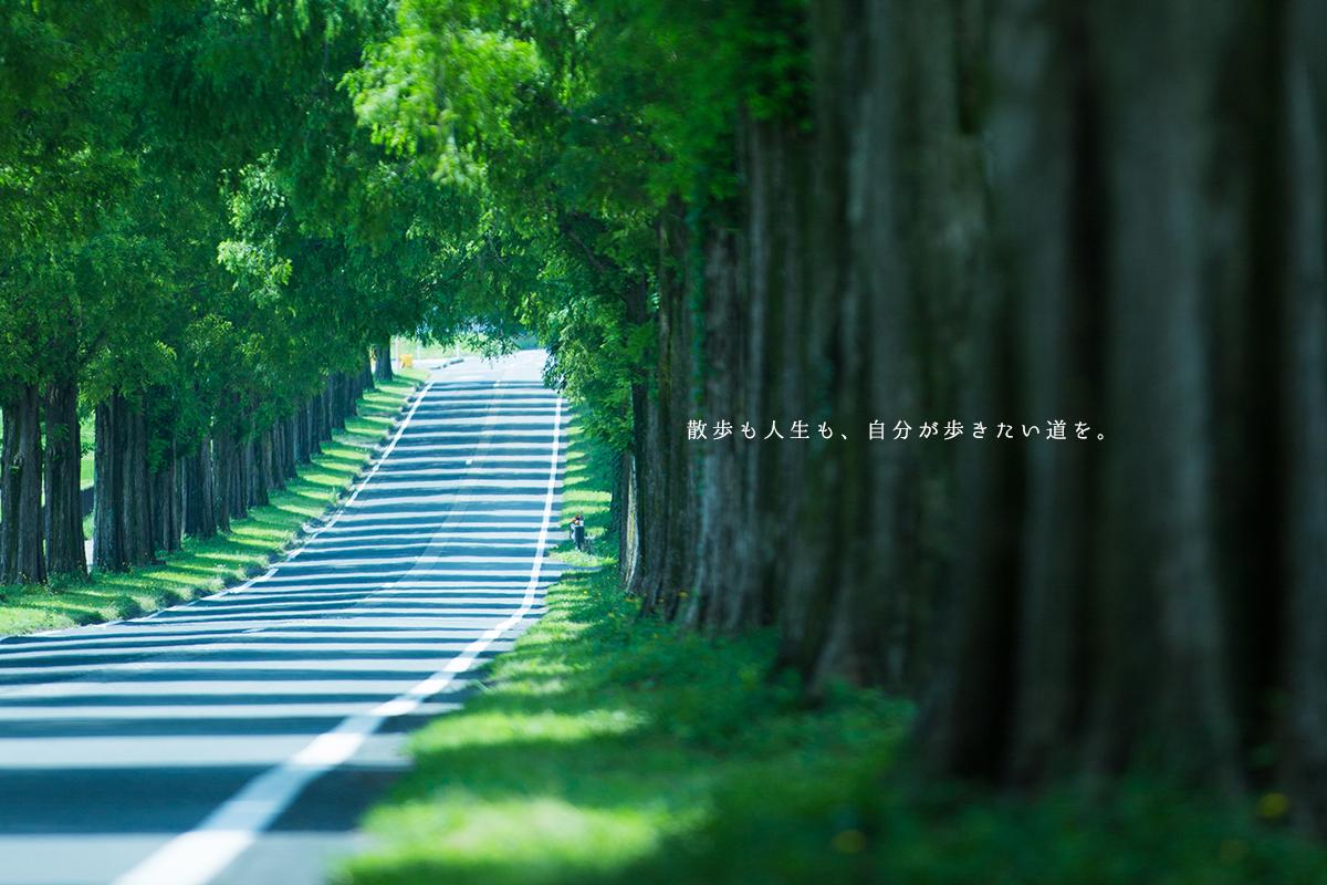 散歩も人生も、自分が歩きたい道を。