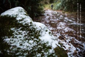 一歩を踏み出しても続かなければ、その足跡は点で終わる。 続けることができれば足跡は線になり、そして道になっていく。