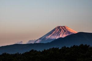 14.お店ココロハチマキ、初の休業日 沼津~富士(21km)
